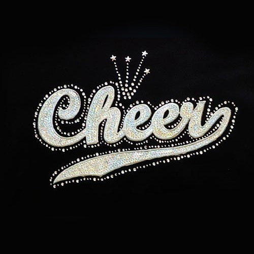 Big Bling  CHEER  Hooded Sweatshirt - BBH-100