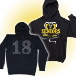 Harford Tech Class of 2018  Black Hooded sweatshirt with class names on back