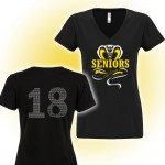 Harford Tech Class of 2018 Ladies black v-neck with class names on back