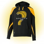 Harford Tech Class of 2019 premium black and gold fleece with class names on back